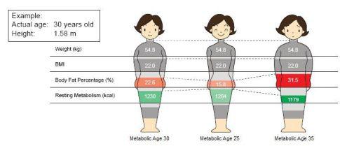 Co to jest wiek metaboliczny?